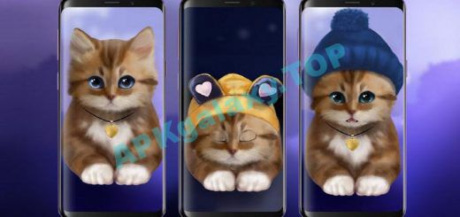 Toffee Cute Kitty Live Wallpaper Apk