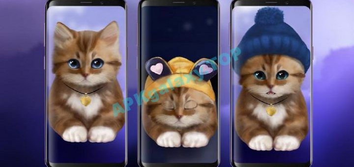 Toffee Cute Kitty Live Wallpaper Pro V1 03 Apk Apkgalaxy
