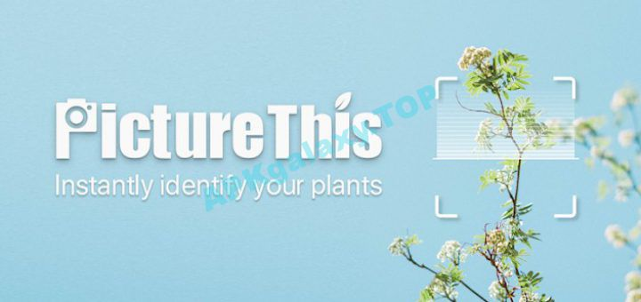 PictureThis – Flower & Plant Identification Apk
