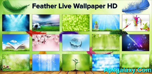 Feather_Live_Wallpaper_HD