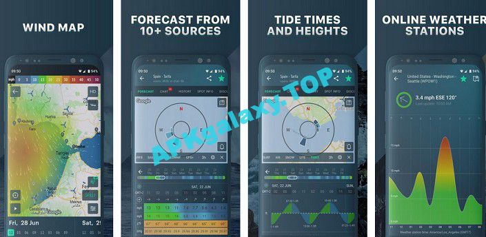 Windy.app wind forecast & marine weather Apk