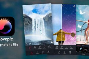 Movepic – photo motion & loop photo alight maker Apk