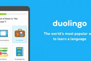 Duolingo Learn Languages Apk